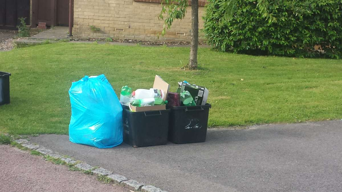 Our Biweekly Bin Collection